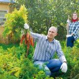 Tipy na dopestovanie zdravej zeleniny z vlastnej záhrady