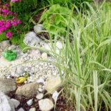 Ako si vybudovať suchý potok