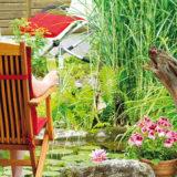 Ako si vytvoriť voňavú záhradu, ktorá lieči