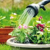 Ako efektívne polievať záhradu alebo Desatoro zavlažovania