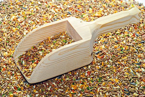 Drevená lopatka na obilie a krmivá