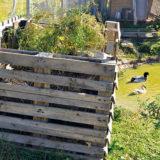 Ako si vyrobiť kvalitné hnojivo za 18 dní