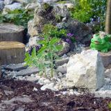 Ako si vytvoriť skalný útes s kvetmi, aby splynul s okrasnou záhradou