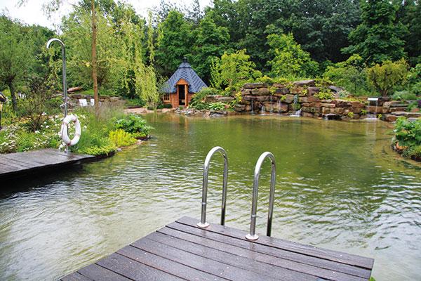 Mladí manželia si v záhrade vybudovali prírodné kúpacie jazierko