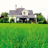 8 rád, ako dosiahnuť krásny trávnik aj na konci leta