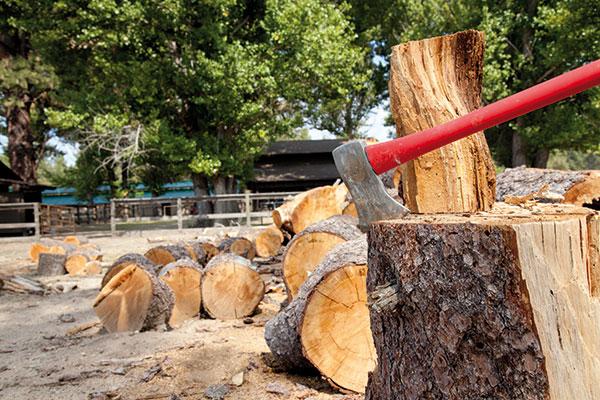 8 tipov na prípravu palivového dreva