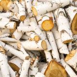 Ako vyberať brikety, čo predstavuje kubík dreva a ďalšie rady k vykurovaniu