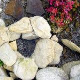 Ako využiť kamene v záhrade?