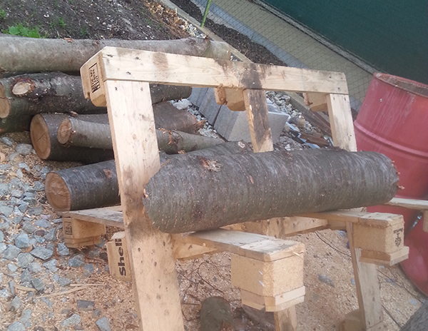DOBRÝ MAJSTER: Koza na drevo z dvoch kusov paliet