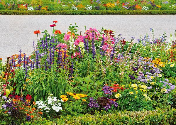 11 dôležitých krokov ku kvitnúcemu záhonu