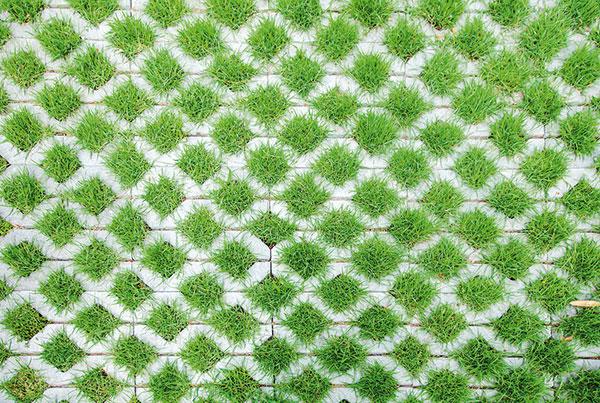 Niekoľko spôsobov, ako v záhrade kreatívne využiť betón