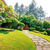 Ako si vybrať najvhodnejšiu trávnu zmes pre založenie trávnika
