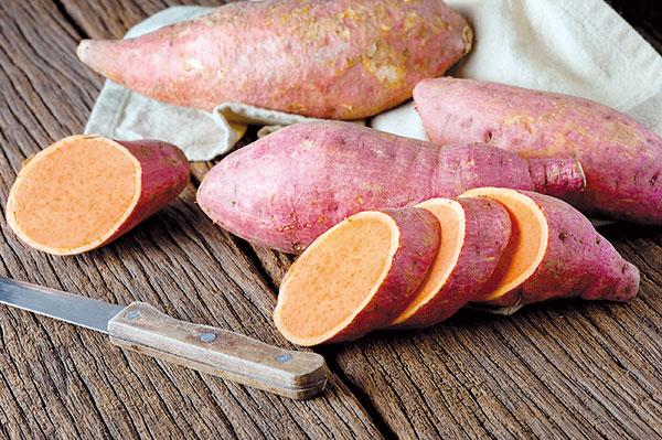 Ako vypestovať sladké zemiaky - bataty