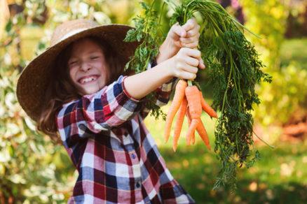 Akú zeleninu môžeme siať a sadiť ešte v júni?