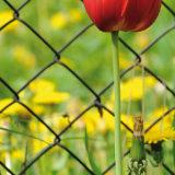 Do akej hĺbky osádzať stĺpiky pre drôtený plot?