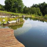 Prírodné ekologické jazierko pri dome vhodné aj na plávanie
