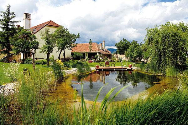Ako na prírodný bazén v záhrade