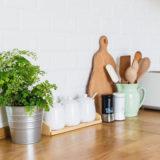 Päť interiérových rastlín, ktoré môžu prežiť (takmer) aj v tme!