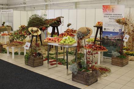 Užitočné tipy pre záhradu a zdravší život ponúkne trojica výstav v Trenčíne