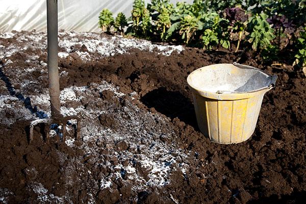 Vápnenie pôdy: Dôležité opatrenie pred koncom roka!