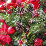 Čím si spestriť a zatraktívniť záhradu aj koncom roka