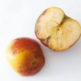 Čo znamenajú hnedé škvrny na jablkách