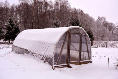 Prečo a ako si založiť skleník? Čo všetko by mal mať?