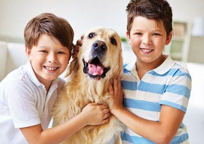 7 užitočných rád pre psíčkarov: Čo pes potrebuje
