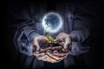 Viete, aký má mesiac vplyv na rastliny?