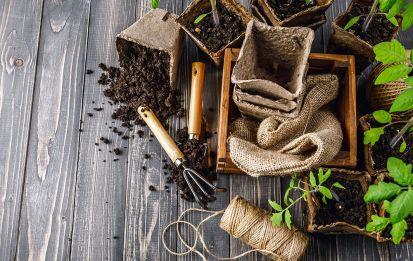 Stopové prvky, zdroj vitality rastlín