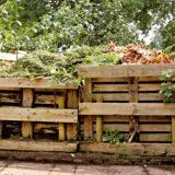 kalendar zahradkara na januar