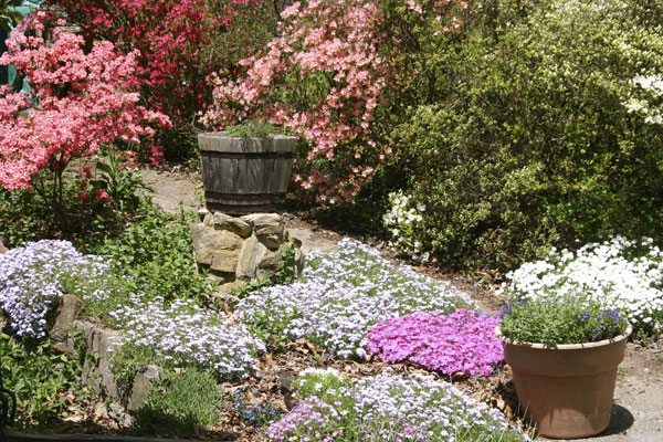 kalendar zahradkara pre marec