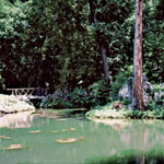 mostiky a lavky v zahrade