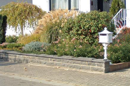 okrasne travy v zahrade