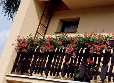 povrchove upravy fasad