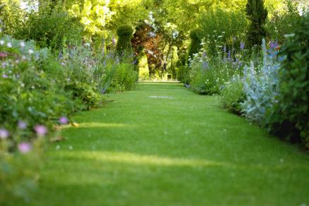 priprava rekreacneho travniku v zahrade