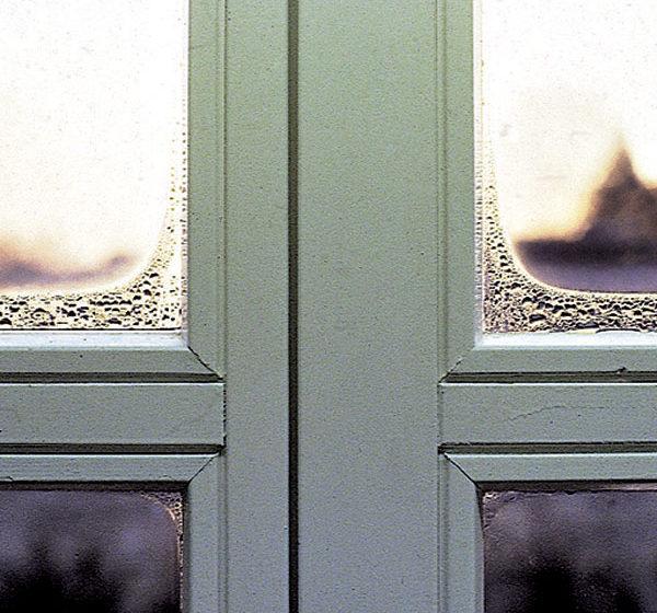 rosenie okien
