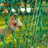staviame plot z poplastovaneho pletiva