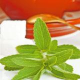 Stévia - sladká tráva, ktorá lieči