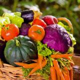 topinambury acakanka zelenina nielen pre diabetikov