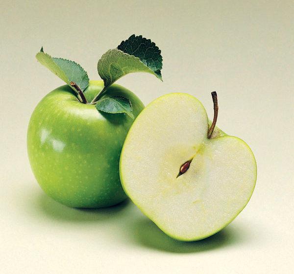 uskladnenie a spracovanie jesennej urody ovocia