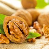 Všetko o pestovaní orechov