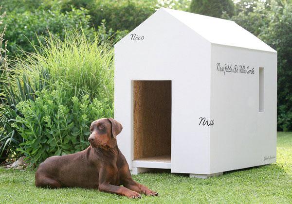 vyrobte si originalny domcek pre psa