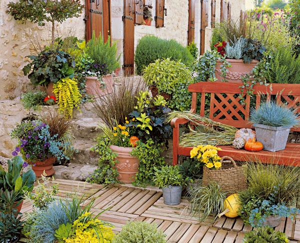 vyvarujte sa najvacsich chyb pri pestovani rastlin