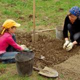 Výživné pôdne substráty