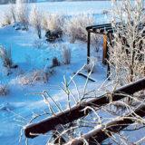 zahrada v zime