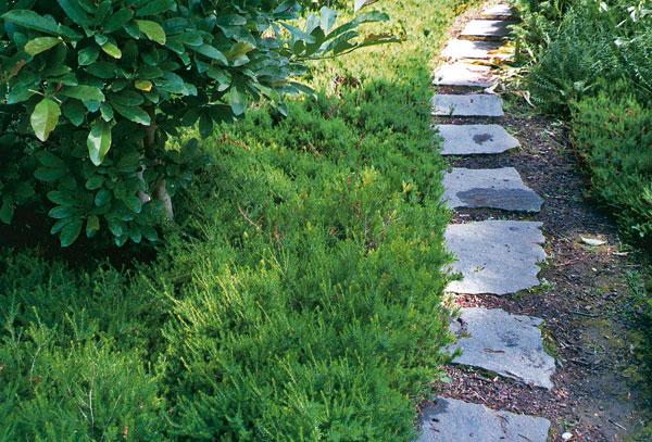 zakladame chodniky v zahrade 1.cast