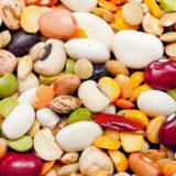 zasady pestovania strukovin