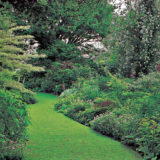 zelena je trava udrzba je hra ii.